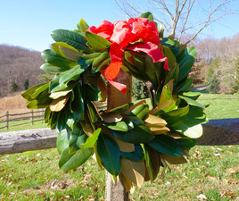 Medium magnolia 20wreath 20 1  20medium