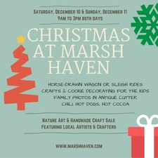 Medium christmas 20at 20marsh 20haven