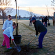 Anaelise, Sydney and Lance Fisher work together to plant a new tree in the West Jordan Veterans Memorial Park on Nov. 5. About 200 volunteers came to the city's tree planting event to replace the trees that had been vandalized during the summer. (Tori La Rue/City Journals)