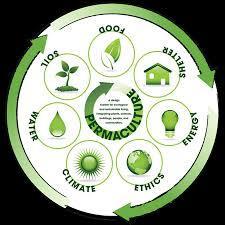 Medium permaculture 20green 20circle 20graphic