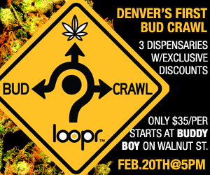 Loopr 20bud 20crawl 202 20 20300x250rev