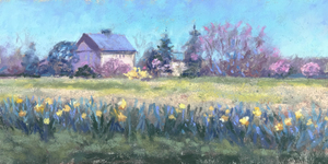 Medium daffodils 20winterthur 20 205 20x 2010 20pastel 20 20185