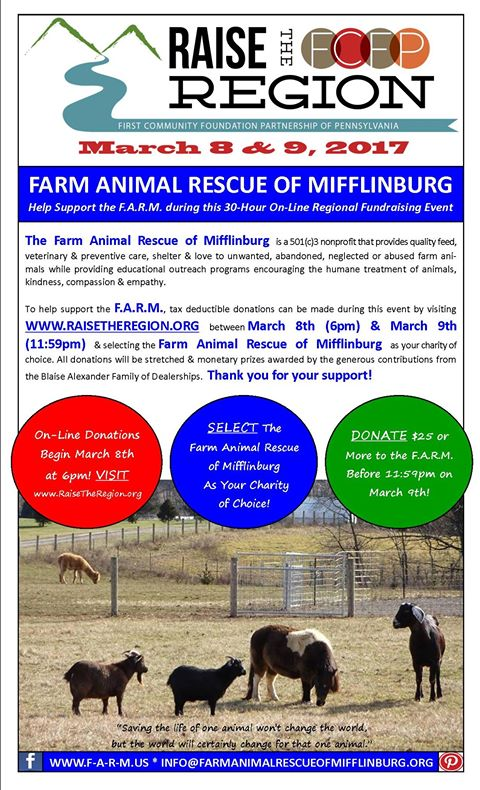 Farm 20animal 20rescue 20of 20mifflinburg 20flyer 202017