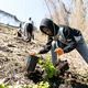 A Tree Pittsburgh volunteer planting trees
