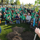 West Jordan residents showed their city pride as they planted trees in 2016. (Reed Scharman)