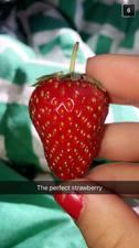 Medium 2017 20the 20perfect 20strawberry