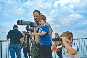 Medium imbd birding program on tower