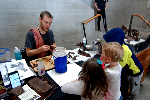 Alex Walton demonstrates rolling modeling chocolate into the ribs for his dinosaur skeletons. (Keyra Kristoffersen/City Journals)