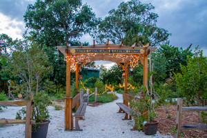 SCCFs Native Landscapes  Garden Center on Sanibel has plants that ward off insects Photo courtesy of SCCF Native Landscapes  Garden Center