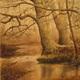 'East Brandywine Bayou' by Timothy Wadsworth.