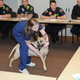 Stephanie Johnson, a veterinary technician from BluePearl Veterinary Partners in Midvale, teaches West Jordan Fire Department paramedics and emergency medical technicians how to performing lifesaving techniques on police service dogs on March 24. (Reed Scharman/West Jordan Fire Department)