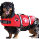Paws Aboard Neoprene Doggy Life Jacket, $36 at Posh Puppy Boutique, 6040 Stanford Ranch Road, Suite 200, Rocklin. 916-435-3044, poshpuppyboutique.com