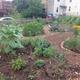 Food City Community Garden