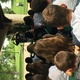 Crowds gather in Murray Park to listen to storyteller Karl Behling. (Janine Nishiguchi/Bountiful resident)