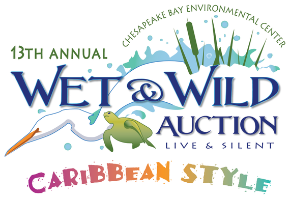 Wet 20  20wild 20auction