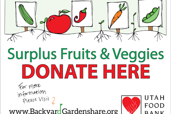 In 2016, Backyard GardenShare collected over 7,000 pounds of produce. (Pat Thomas/Backyard GardenShare)