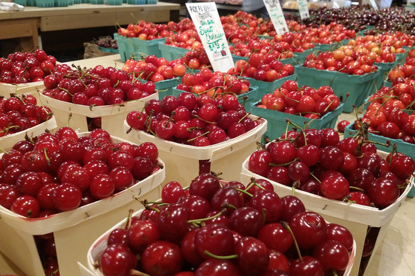 Fresh cherries at Brown's Orchards & Farm Market
