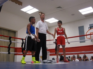 Medium boxing 201