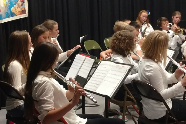 The school orchestra performs for Fine Arts Night. (Jet Burnham/City Journals)