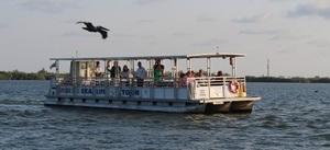 Medium nature sealife cruise 26