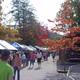Covered Bridge Festival