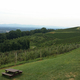 The view from Carter Mountain Orchard