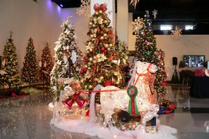 Festival of Trees - start Nov 28 2017 1000AM