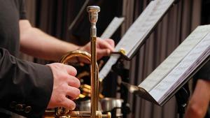 Medium trumpet 2942146 1920