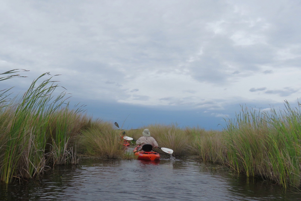 Paddling the Turner River through the Big Cypress National Preserve offers a chance to explore multiple habitats in one day. Photo courtesy of Judith Biery.