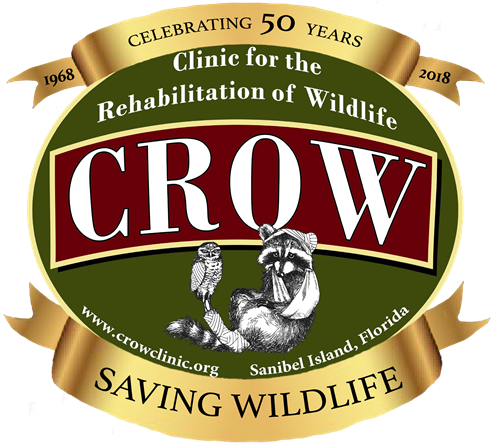 Crow 50th logo   final