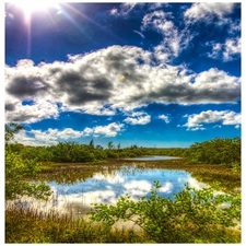Rotary Park Environmental Center - Cape Coral  FL
