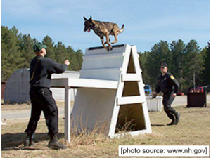 NH State Police K-9 Demonstration - start Aug 24 2018 0700PM
