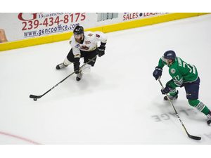 Florida Everblades Playoffs Game 2 - start Apr 17 2018 0730PM