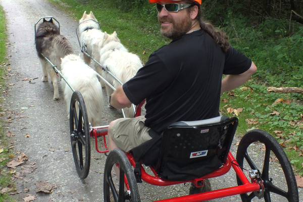 Urban mushing is fun for dogs, and a great way to explore the outdoors together.