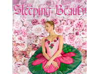 Sleeping 20beauty 20 202018 20calendar 20tile