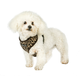 Urban Pup Small Patterned Harness
