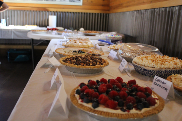 Homemade pies such as the Very Berry Cream Cheese (front) and the Summer Nights Chocolate and Peanut Butter (center) were judged during the homemade pie contest. (Travis Barton/City Journals)