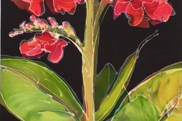 'Red Canna' by Patricia Walkar.