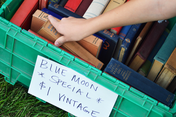 One of the festival vendors featured a used book sale.