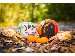 Fall Family Candy and Costume Festival - start Oct 31 2018 0500PM