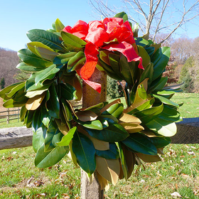 Magnolia 20wreath 20web