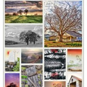 Gold country artists gallery poster 205x300