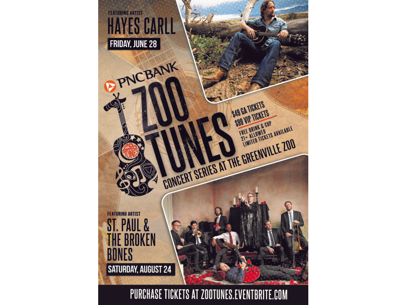 Greenville Zoo Foundation Announces 2019 PNC Bank Zoo Tunes Lineup