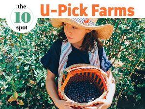10 Farms To Pick Your Own Produce