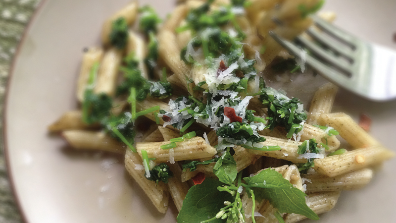 Garlic Mustard Pasta Recipe