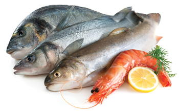 Eco-Friendly Seafood Choices