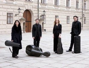 Medium minetti quartett on vienna plaza