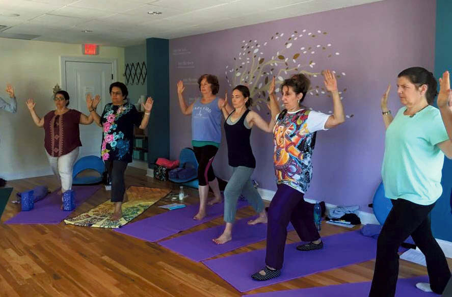 Lifeforce Yoga at The Temperance Center