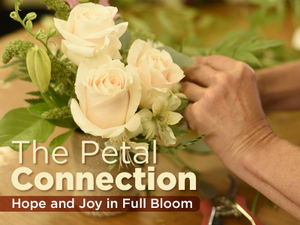 The Petal Connection Hope and Joy in Full Bloom