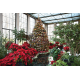 Yuletide at Winterthur features four decades of dazzling displays that visitors love the most